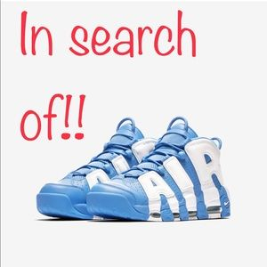 In search of Nike uptempo in either color